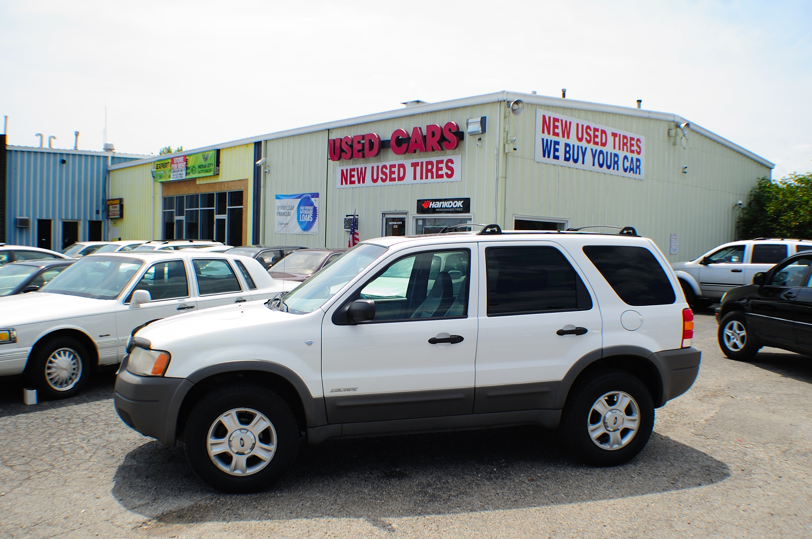 Ford Escape Xlt White Suv Sale