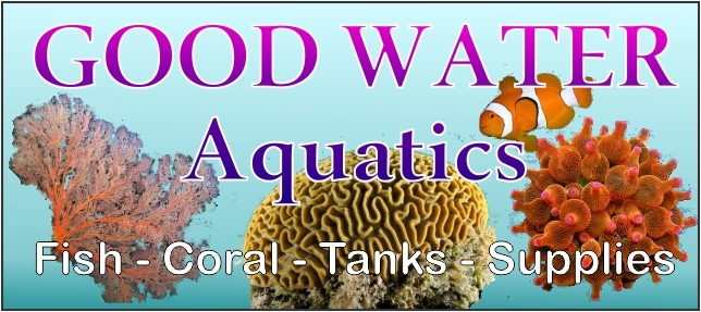 Good Water Aquatics Logo