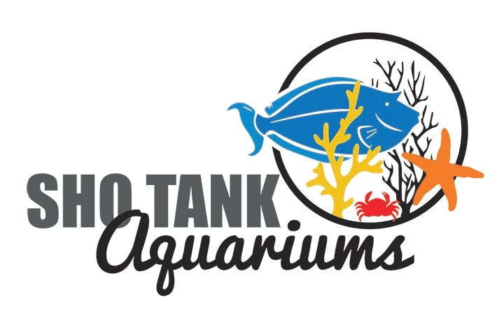 Sho Tank aquariums tropical fish store live coral fish tank supplies